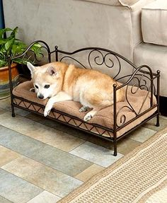 "Give your dog or cat a special place to relax with this Scrolled Metal Pet Bed. The sturdy frame (22-1/8""W x 12""D x 13-1/8""H) has a scrolled metal design with r"