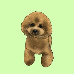 背景薄緑色バージョン Teddy Bear, Drawings, Animals, Animales, Animaux, Teddy Bears, Sketches, Animal, Drawing