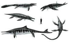 Bildergebnis für monster von aramberri