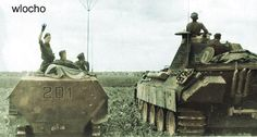 """5th SS-Panzer-Division """"Wiking"""" in Poland."""
