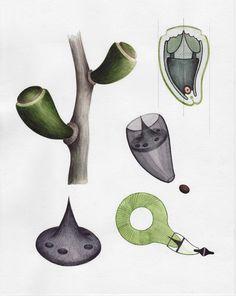 Growth Assembly - Sascha Pohflepp