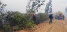 Garden Route fire rips through 86 000 hectares - four times as much as 2017 Knysna fire Knysna, Country Roads, Fire, Garden, Garten, Gardens, Tuin, Yard