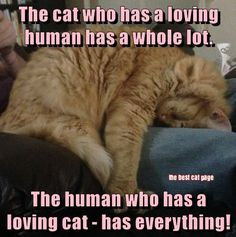 OMG this is so true....especially with an orange one!