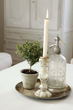 Spritzer, Topiary and Light.  Charming combination.