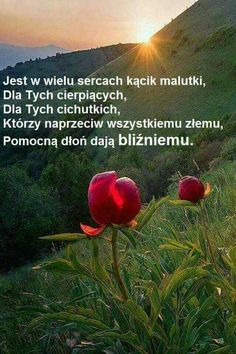 Poland, Nostalgia, Pin Up, Health Fitness, Humor, Quotes, Martial, Tulips, Thoughts