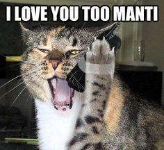 Here we go #teo #teoing #Manti #my1039phoenix #imlonely #fakegirlfriend #catfish #catfishing #catcalls #cat #ND #Notredame
