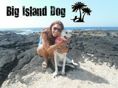 Things to do with your dog in Kona on the Big Island Hawaii http://sitk9sit.com/blog/things-to-do-with-your-dog-in-kona/