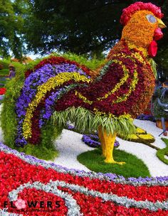 Rooster of flowers. Do not follow the link to visit the site. It is an advertising site and does not have the rooster on it.