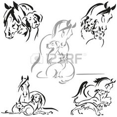 kitty: Horse, dog and cat