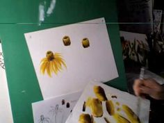 how to paint yellow cone flowers. texas wild flowers