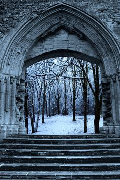 A haunting arch looks deep into a winter forest, you hear a friendly whispering…
