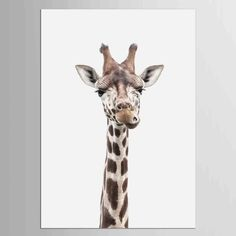 Visit the post for more. Dining Room Wall Art, Kids Room Wall Art, Wall Art Decor, Giraffe Pictures, Giraffe Painting, Types Of Art Styles, Animal Posters, Animal Decor, Nordic Art