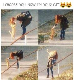 I choose you, now I'm your cat #CatMemes