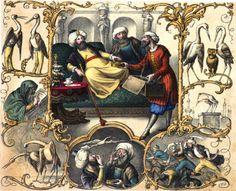 Kalif Storch um 1850 - Die Geschichte von Kalif Storch – Wikipedia