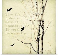 Birds - Amy Melious