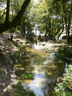Tsuyama - Shurakuen Garden