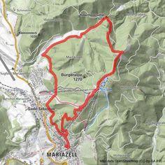 Rund um die Mariazeller Bürgeralpe (694 und 692) - BERGFEX - Wanderung - Tour Steiermark Andreas Hofer, Post Bus, S Bahn, Map, Best Hiking Shoes, Parkour Gym, Trench, Location Map, Maps