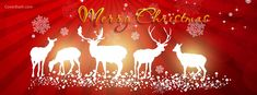 Share the Christmas love and traditions. Decorate your desktop backgrounds with Christmas Wallpapers. Christmas Fb Cover Photos, Christmas Profile Pictures, Christmas Facebook Cover, For Facebook, Christmas Date, Christmas Lights, Christmas Decorations, Xmas, Christmas Ideas