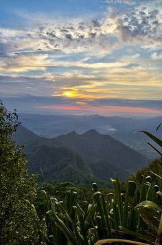 The view from three quarters of the way up Mt Warning, NSW, Australia Beautiful Sunset, Beautiful World, Beautiful Places, Beautiful Scenery, Tasmania, Places To Travel, Places To See, Australia Travel, Queensland Australia