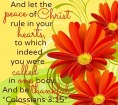 COLOSSIANS 3:15  15 Let the peace of Christ rule in your hearts,  since as members of one body you  were called to peace. And be thankful.