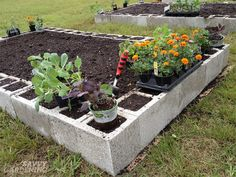 Cinder Block Raised Garden Bed Is Easy DIY