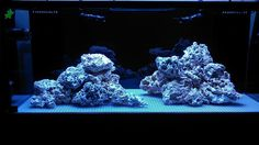Tips and Tricks on Creating Amazing Aquascapes - Page 10 - Reef Central Online Community