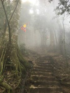 The climb to Tan Vien peak (Ba Vi national Park, Vietnam)