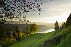 Auf insgesamt 43 Etappen und einer Gesamtlänge von 750 Kilometern bietet der Alpe-Adria-Trail jede Menge Möglichkeiten – gefunden bei Away, dem HolidayCheck-Magazin