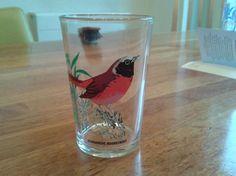 glas gekraagde roodstaart - Prijs: € 2,00