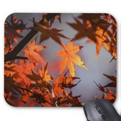Fall Wonderland of Autumn Colour Mouse Pad - autumn gifts templates diy customize