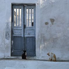 Old Doors, Thessaloniki, Wonderful Places, Athens, Statues, Greece, Sky, Island, Cats