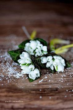 ghiocei Parsley, Food Photo, Herbs, Desserts, Tailgate Desserts, Deserts, Herb, Postres, Dessert