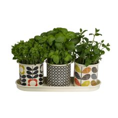 Orla Kiely Herb Pots Three vibrant enamel pots featuring Orla's recognisable prints; daisy spot in charcoal, scribble stem and flower stem, which sit neatly in an enamel tray for growing herbs and small plants. Great for window sills and patio gardens Herb Planters, Herb Pots, Garden Pots, Planter Pots, Herb Garden, Garden Shop, Ceramic Planters, Indoor Garden, Garden Ideas