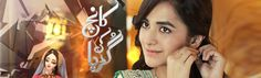Watch Pakistani Dramas,Talk shows and Political News.