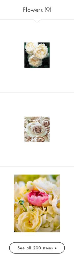"""""""Flowers (9)"""" by asia-12 ❤ liked on Polyvore featuring home, home decor, floral decor, backgrounds, rose flower bouquet, flower bouquet, rose bouquet, rose home decor, flower stem and flowers"""