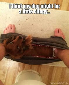 yep...cant put my pants on alone anymore   Omg is it weird my dog does this all the time ??? LMAO