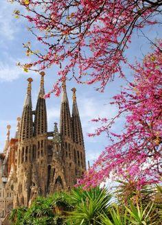 Barselona, İspanya