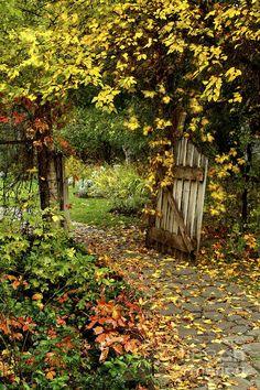 Landscape Photograph - The Garden Gate by Kimberly Kafton The Secret Garden, Hidden Garden, Secret Gardens, Magic Garden, Cottage In The Woods, Garden In The Woods, Nature Aesthetic, Indian Aesthetic, Spring Aesthetic