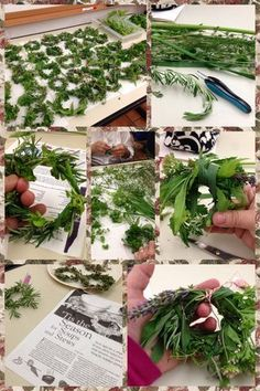 Kitchen Apothecary~ Herbal Soup Wreaths - The Windesphere Witch Healing Herbs, Medicinal Plants, Natural Healing, Herbal Remedies, Home Remedies, Natural Remedies, Health Remedies, Kitchen Witchery, Little Presents