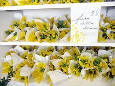 Shelves of mimosa posies for International Women's Day #wattle #acacia #flower #gift