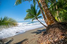 Pavones Golfito, Puntarenas, Costa Rica – Luxury Home For Sale Puntarenas, Dream Properties, Real Estate Companies, Costa Rica, Luxury Homes, Outdoor, Luxurious Homes, Outdoors, Luxury Houses