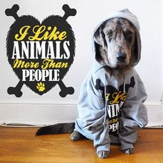 Our friend the_great_caspy is too adorable trying to wear our 'Animals Over People' hoodie! #animalhearted #animalheartedapparel