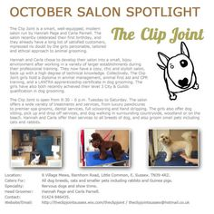 Salon Spotlight October 2013, The Clip Joint
