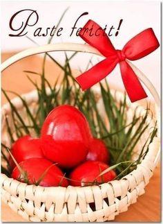 Yellow Roses, Happy Easter, Fruit, Christmas, Noroc, Spirituality, Happy Easter Day, Xmas, Navidad