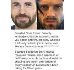 Bearded Chris, friendly lumberjack. Bearded Sebastian, dumnezeul meu. ține-mă ;)
