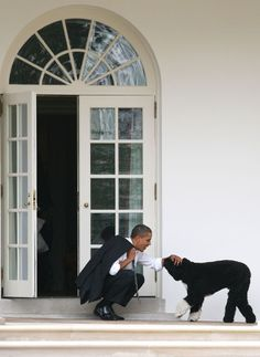 50 President Barack Obama moments in honor of his birthday: Obama playing with a dog
