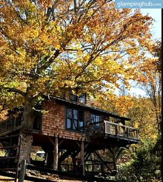 1000 images about glamping on pinterest cabin rentals