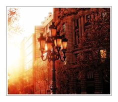 La Rambla in Barceloan is a tree-lined pedestrian mall, it stretches for 1.2 kilometers between Barri Gòtic and El Raval, connecting Plaça de Catalunya in the centre with the Christopher Columbus Monument at Port Vell.  Photography by Anne Costello. Please check link http://www.lokofoto.com/photos/3534