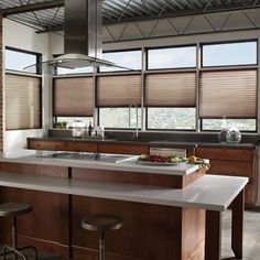 """Our Privacy Pleated Shades are manufactured with route holes recessed behind the pleats, eliminating the beams of light you get on """"old fashion"""" pleated shades."""