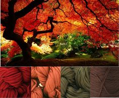 My Color Palettes / Autumn Delight  Lucci Cotton Tape Yarn in:  Gallant Red, Rust, Olive & Chocolate